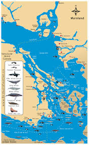Map Of Washington Coast by Top 25 Best San Juan Islands Ideas On Pinterest Love Island