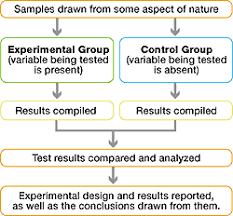 good experimental design scientific method tutorial the scientific method