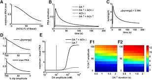 sensing positive versus negative reward signals through adenylyl