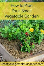 1985 best green gardenista images on pinterest plants gardening