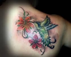 small hummingbird ideas and small hummingbird