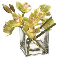 Square Vase Flower Arrangements 8 Inch Green Cymbidium Orchid In Square Vase Wf3661 Gr Bu