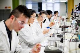 Seeking Melbourne Melbourne Careers Faculty Of Science