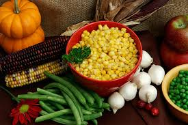 vegetables for a thanksgiving feast stock photo image 11637098