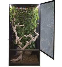 chameleon cages enclosure setups and habitats guide