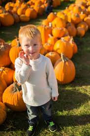 Pumpkin Farms In Wisconsin Dells by 39 Best Fall In Wisconsin Activities Images On Pinterest