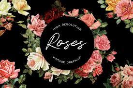 Rose Flower Design Avalon Rose Design