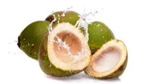 sehat perkasa ramuan tumbuhan alami sebagai obat kuat alami