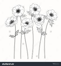 Tattoo Backgrounds Ideas Best 25 Flower White Background Ideas On Pinterest Background