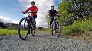The New Zealand Cycle Trail Official Website Hauraki Rail Trail New Zealand Cycle Trails Nga Haerenga