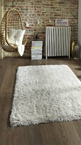 Cheap Shag Rugs 145 Best Décor The Perfect Rug Images On Pinterest Area Rugs