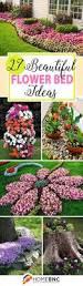 perennial garden layout ideas flower designs low maintenance and