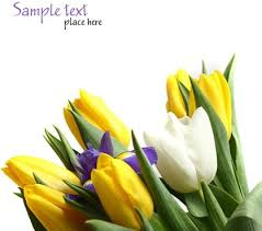 flowers images flowers free images clipart