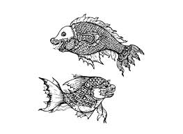 drawing of fish thai traditional illustrations creative market