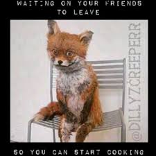 Stoned Fox Meme - waiting on your friends to leave so you can start cooking