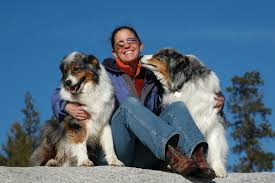 australian shepherd history file woman hugging two australian shepherd dogs jpg wikipedia