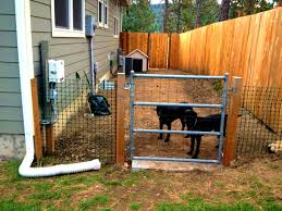 Backyard For Dogs by Patio Knockout Diy Dog Fence Design And Ideas Cooper House Cheap