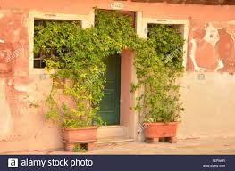 potted plants by door stock photos u0026 potted plants by door stock
