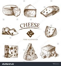 set cheese sketch isolated on white stock vector 539309500