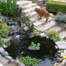 Pond In Backyard by 202 Best Backyard Ponds And Water Features Images On Pinterest