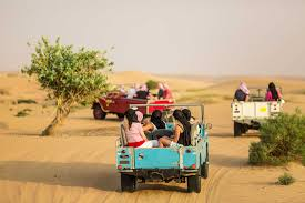 land rover safari for sale heritage desert safari dubai in vintage land rovers