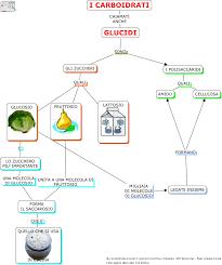 glucidi alimenti alimenti e nutrienti sc media aiutodislessia net