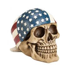 skull decor skull bathroom decor skull kitchen decor american flag bandana
