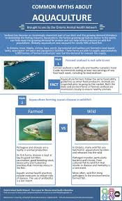 common myths about aquaculture u2013 infographic u2013 ontario animal