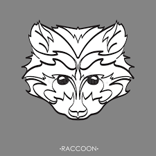 stylized raccoon vector illustration of raccoon sketch of