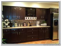 painted vs stained kitchen cabinets paint or stain kitchen cabinets beautiful stylish home design ideas