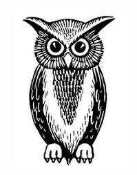 tattoos knowledg paper flowers wisdom night owl inspir quot owls