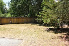 lawn look like this how to prim u0026 prep it for the season ahead