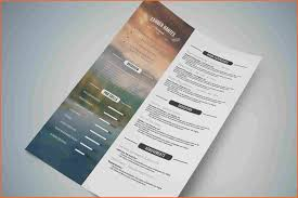 Successful Resume Template 6 Excellent Resume Samples 2016 Budget Template Letter