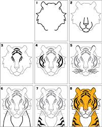 how to draw a tiger kid scoop