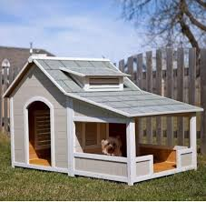 creative idea cool colorful dog outdoor trailer house ideas 12
