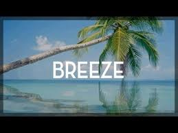 ty dolla sign x chris brown type beat breezy r b beat