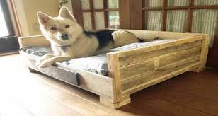 fabriquer un canapé en bois lits pour chien en palette bois à réaliser soi même