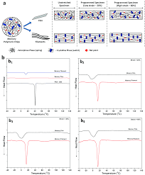 Vitrificateur No Visible Stress Memory Polymeric Filaments For Advanced Compression Therapy
