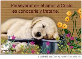 ver imágenes cristianas de amor postal perseverar en el amor de cristo postales cristianas