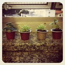 Diy Garden And Crafts - my little nespresso capsules garden d i y craft ideas