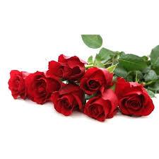 Rose Flower Images Red Rose Flower Rose Flower Divine Flowers Hosur Id 14788137633