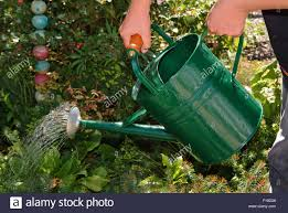 decorative watering cans garden watering cans uk home outdoor decoration