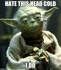 Head Cold Meme - star wars yoda meme imgflip