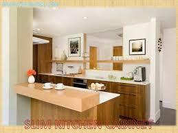 slim kitchen pantry cabinet kitchen cabinets kitchen pantry cabinet small kitchen design
