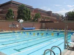 Cost Of Putting A Pool In Your Backyard by Ucla Recreation Aquatics