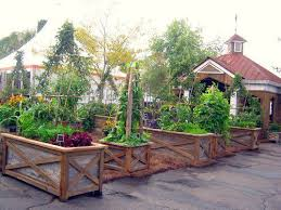 Garden Box Ideas Vegetable Garden Box Ideas And Photos Madlonsbigbear