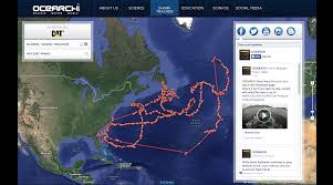 great white sharks you can track u0027em cnn travel