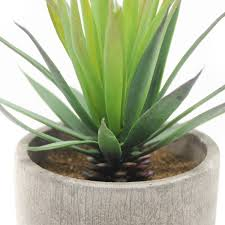 amazon com velener mini home decoration artificial plants aloe