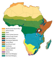 biomes map explore africa biomes of africa
