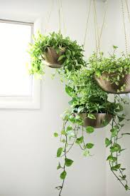 Home Plant Decor by Hanging Planters Out Of Metal Bowls U2014love This Click Through For
